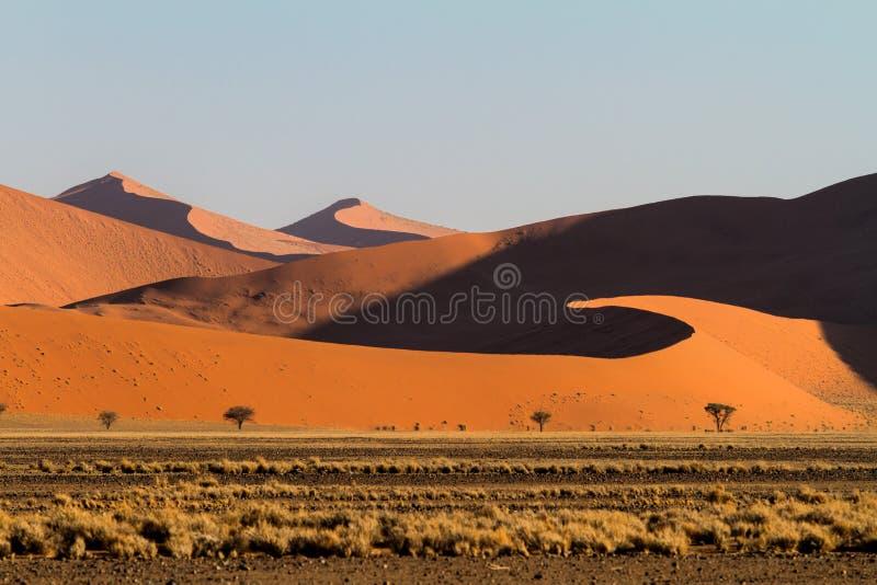 Rode zandduinen van Sossusvlei in Namibië stock afbeeldingen