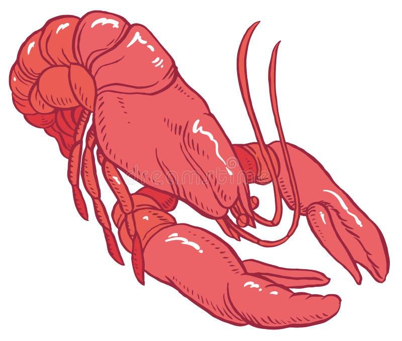 Rode zeekreeft vectortekening royalty-vrije illustratie