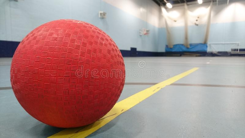 Rode zijsprongbal op de lijn in sportshall stock fotografie