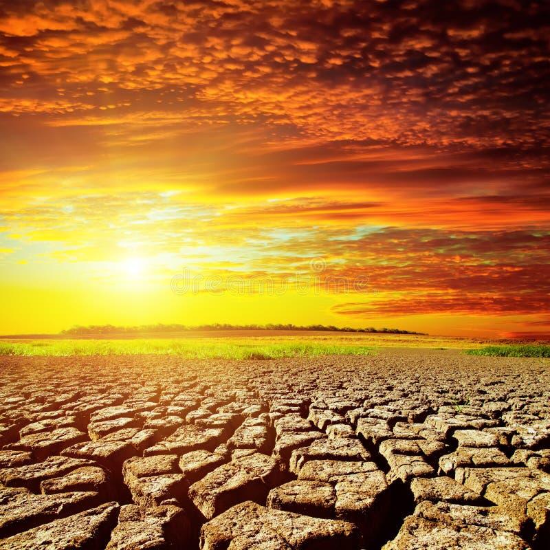 Rode zonsondergang over woestijn stock foto's