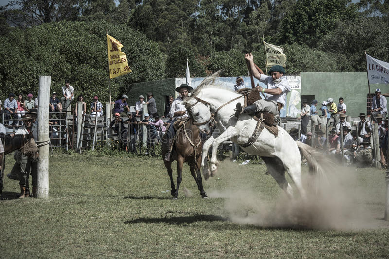 Rodeio dos gaúchos fotografia de stock royalty free