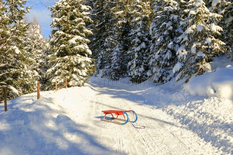 Rodel (雪橇)在红色和蓝色 免版税库存图片