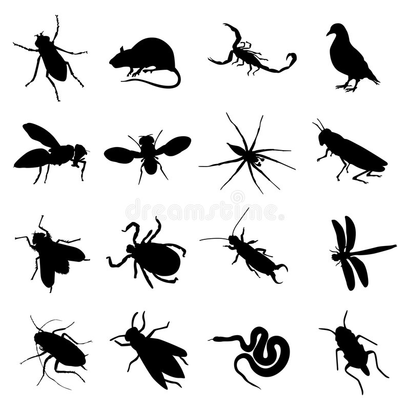 Free Rodent And Pest Silhouette Royalty Free Stock Image - 8777576