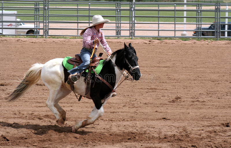 Download Rodeo stock photo. Image of rider, rodeo, horse, arena - 2369922