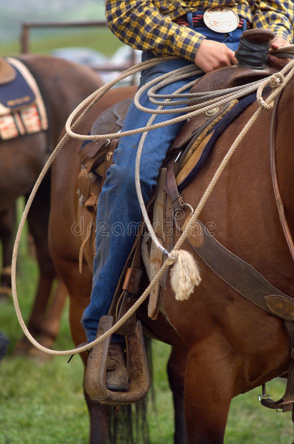 Rodeo lizenzfreie stockfotografie