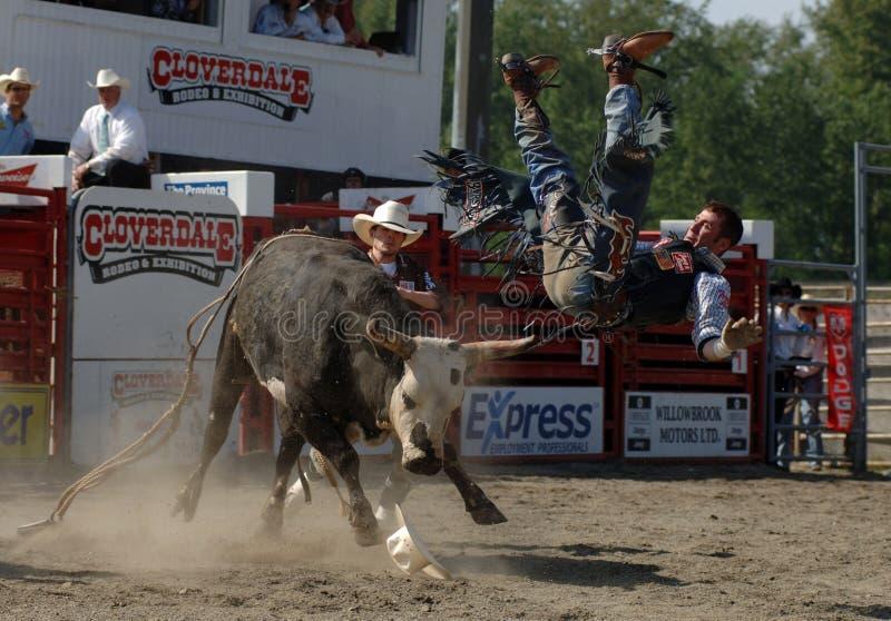 Rodeo: Bull Fighting