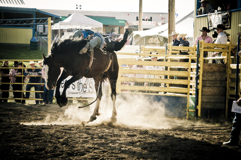 Rodeo and cowboys stock photo