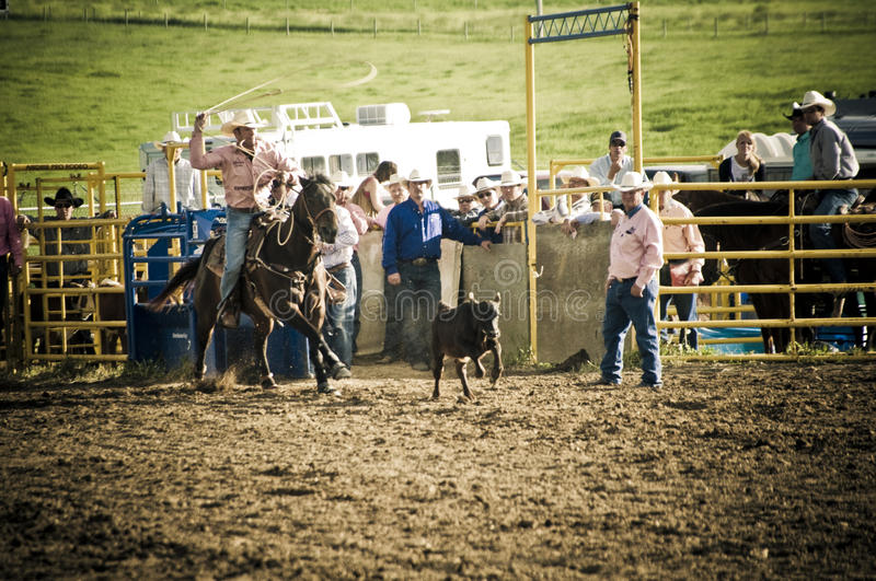 Rodeo and cowboys stock image