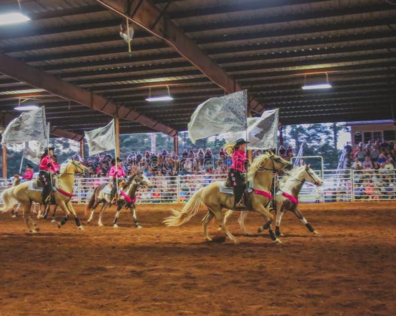 Rodeo cowtjejer presterar med silverflaggor royaltyfri fotografi
