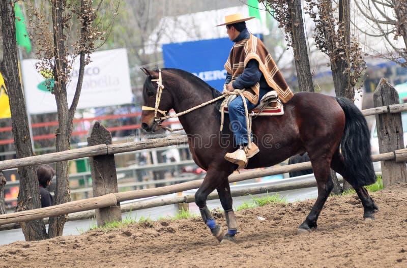 Rodeo en Chile fotos de archivo