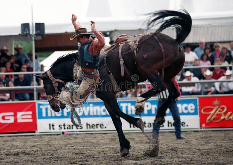 Rodeo: Saddle Bronc