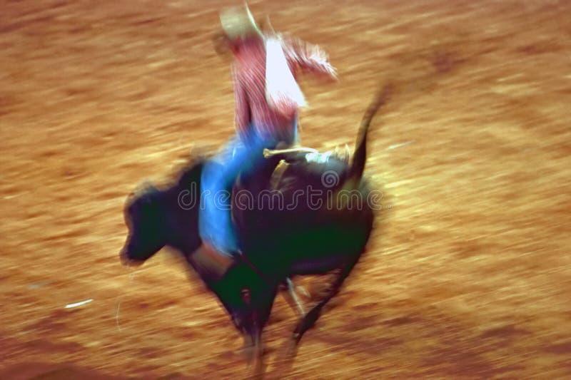 Rodeo. Show in Phoenix Arena, Arizona royalty free stock image