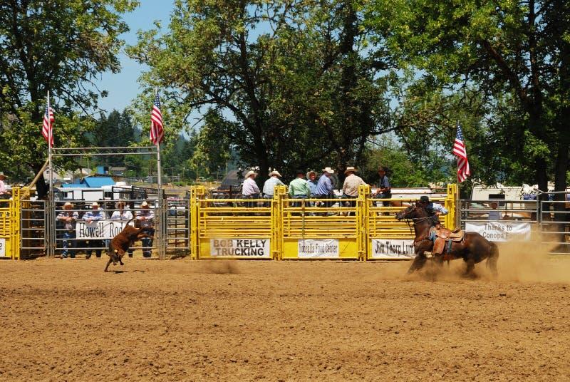 Rodeo-Spaß stockbilder