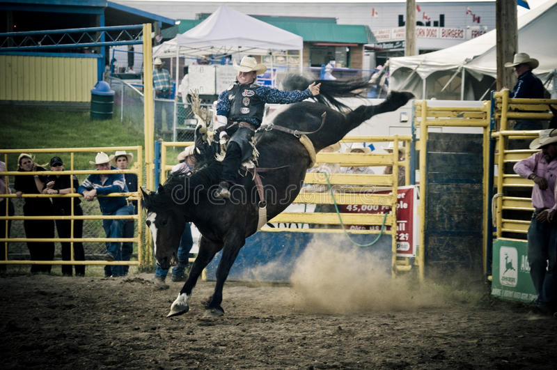 Rodeo und Cowboys stockbild