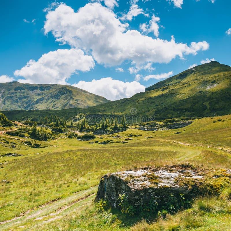 Rodna山风景在东喀尔巴汗,罗马尼亚 免版税库存图片
