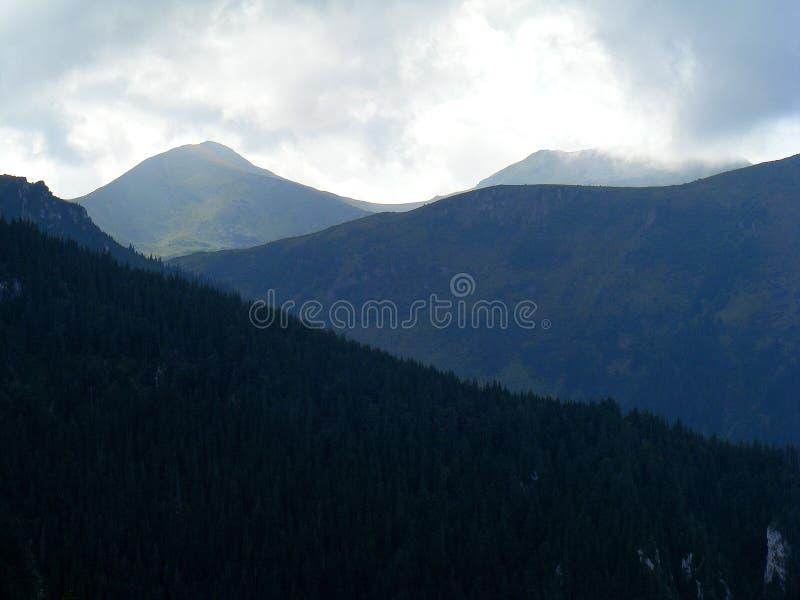Rodnei berglandskap i norr Rumänien i östliga Carpathians fotografering för bildbyråer