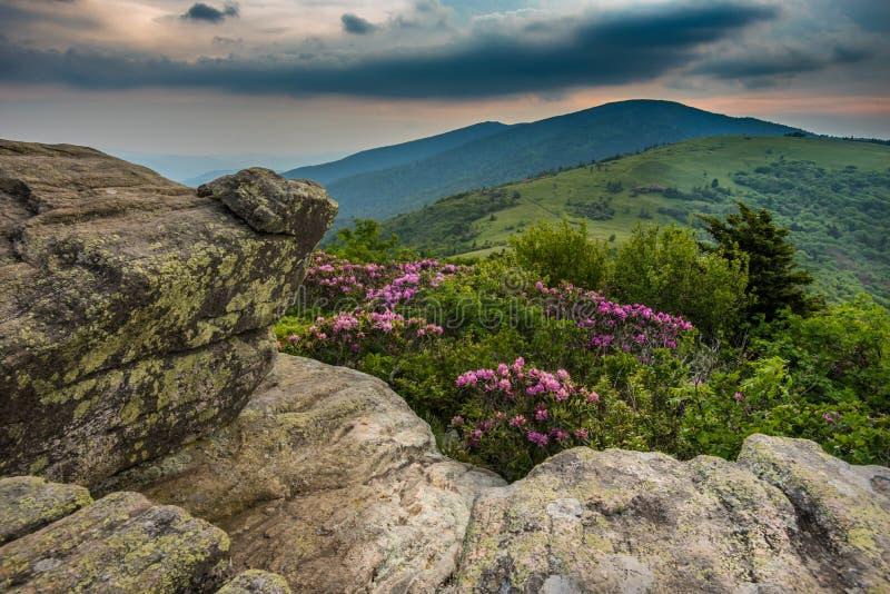 Rododendro da opinião de Keyhold em Jane Bald fotos de stock royalty free