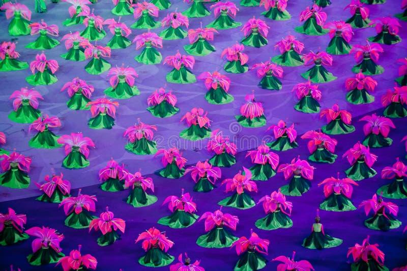 Rododendronsimsii: de Zevende Nationale Stadsspelen die ceremonierepetitie openen stock foto's
