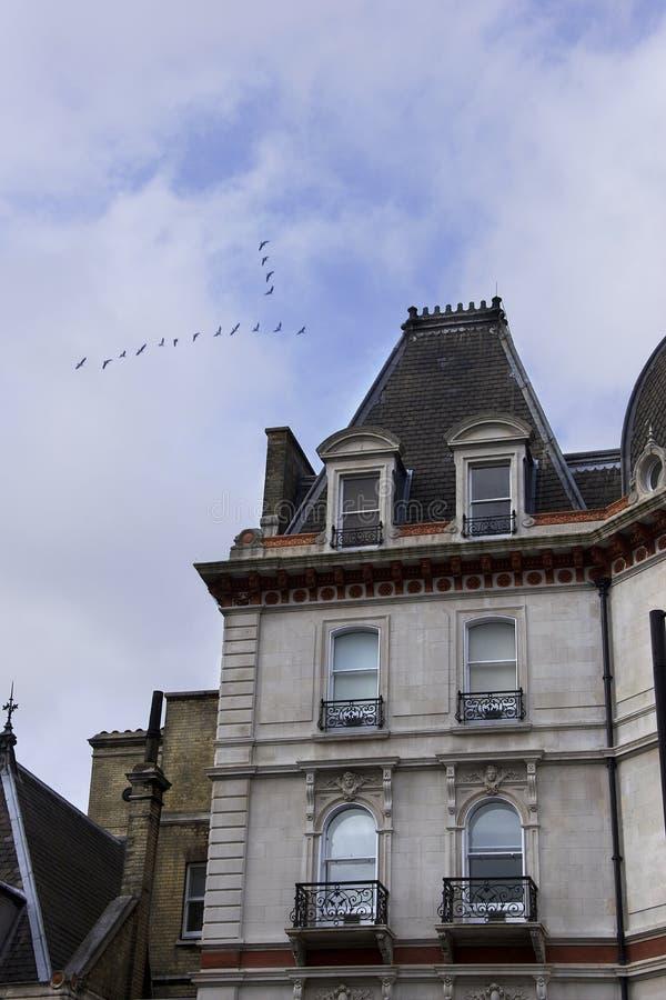Rodzajowy Brytyjski budynek mieszkaniowy z trójgraniastym kształtnym kierdlem ptaki lata above spod spodu zdjęcie stock