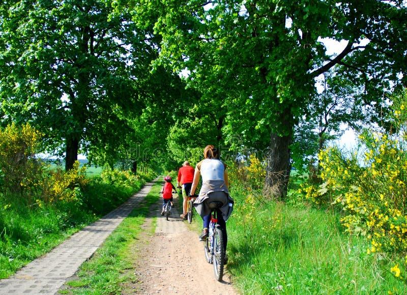 rodzina na rowerze zdjęcie royalty free