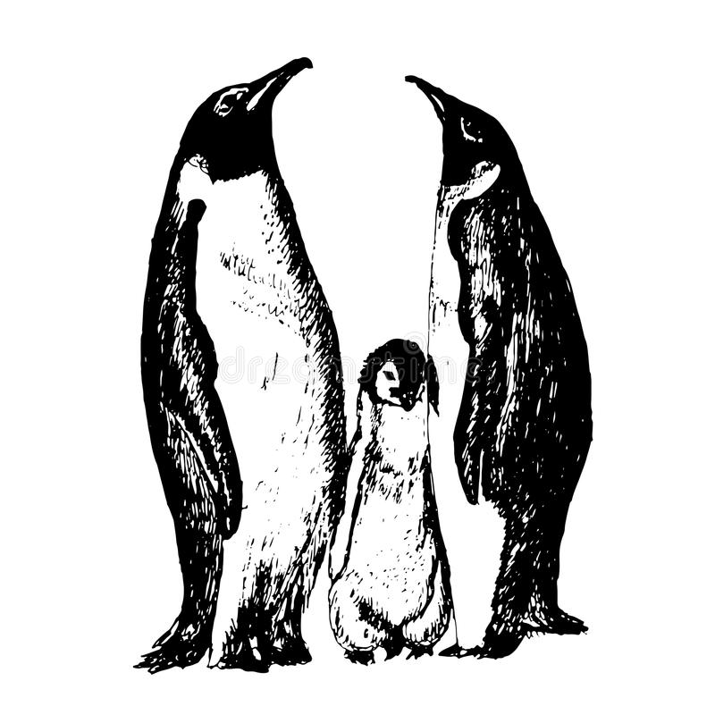 Rodzina pingwinu nakreślenia ręka rysująca ilustracja royalty ilustracja