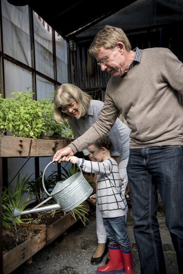 Rodzina Pomaga Uczący dzieciaka ogrodnictwo zdjęcie royalty free