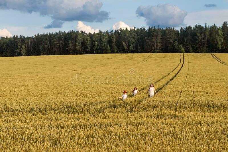 Rodzinna mama, dwa dziecka i chodzi pszenicznych pola lasy i zdjęcia royalty free