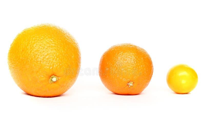 rodzinna pomarańcze zdjęcia royalty free