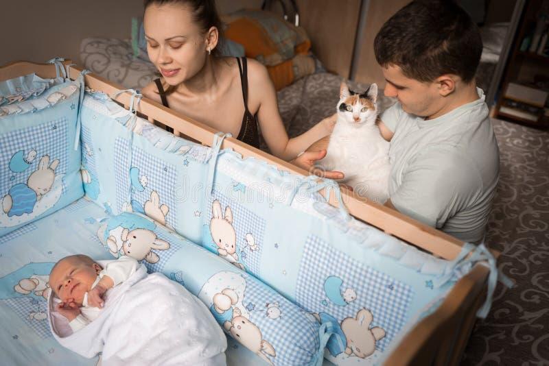 Rodzinna scena Rodzice siedzą przy ściąga nowonarodzony Mam spojrzenia przy jej synem Ojciec trzyma kota w jego rękach Szczęśliwy zdjęcie royalty free
