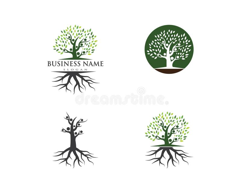 Rodzinnego drzewa loga szablon ilustracja wektor