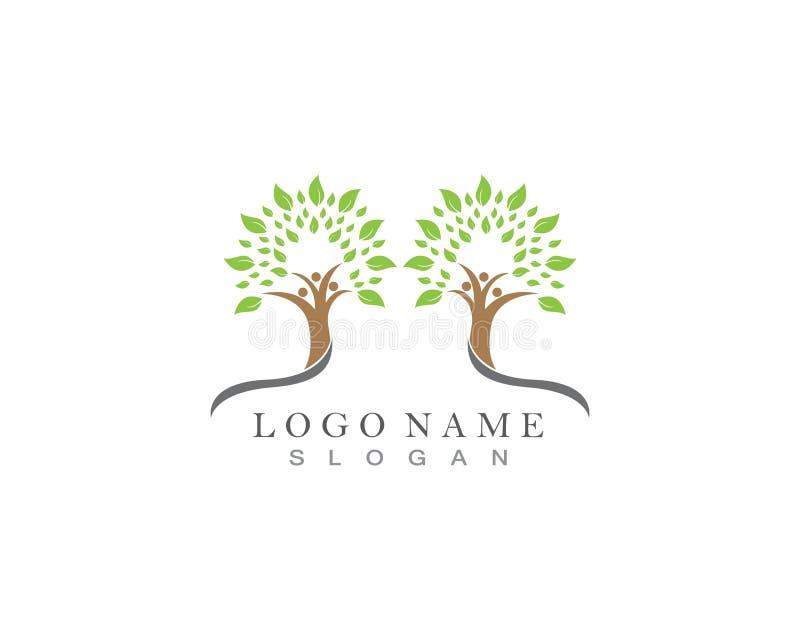 Rodzinnego drzewa loga szablonu ikony wektorowy projekt royalty ilustracja