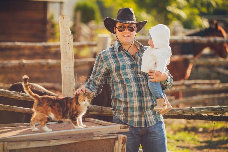 Rodzinni żywieniowi konie w łące obrazy royalty free