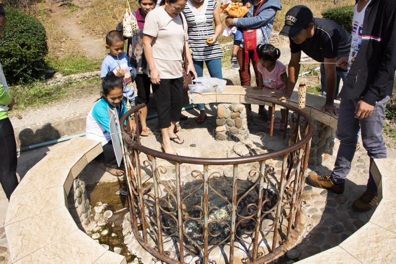 Rodzinni ludzie gotuje wrzących jajka w gorącej wiośnie Pa Tueng Gorąca wiosna przy Mae Chan w Chiang Raja, Tajlandia zdjęcie stock