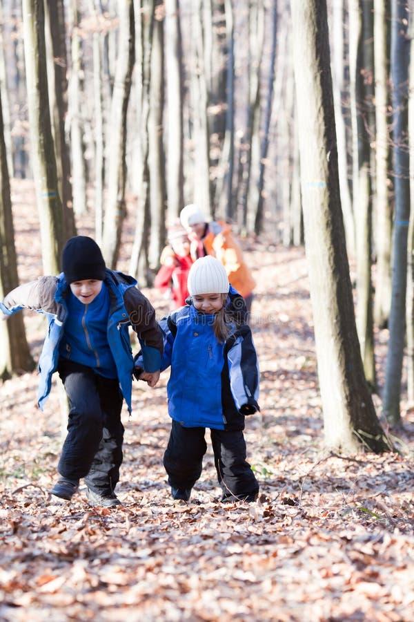 Rodzinny odprowadzenie w drewnach zdjęcie stock