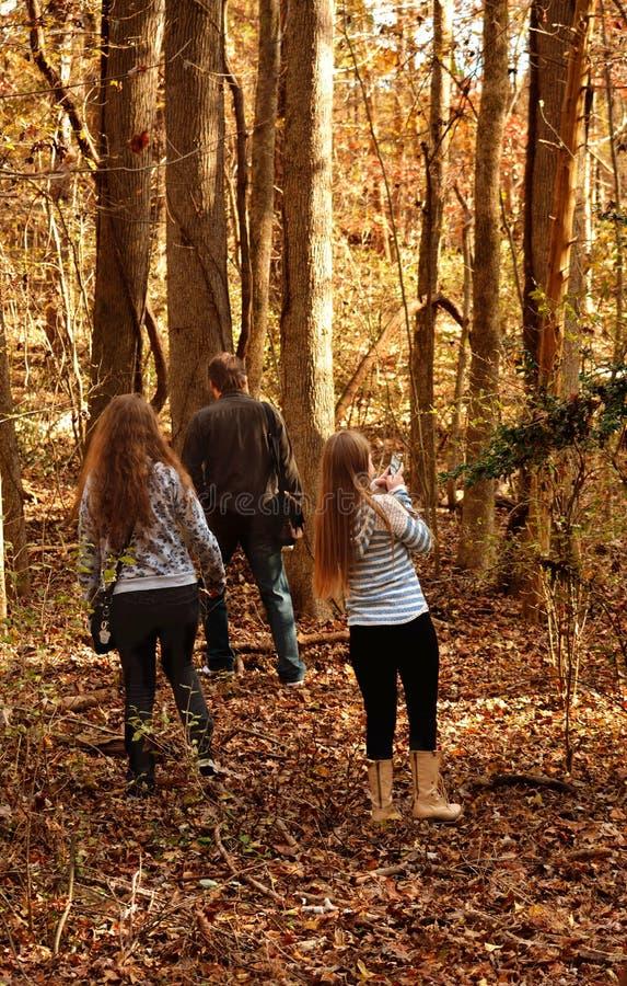 Rodzinny odprowadzenie w lesie obrazy stock