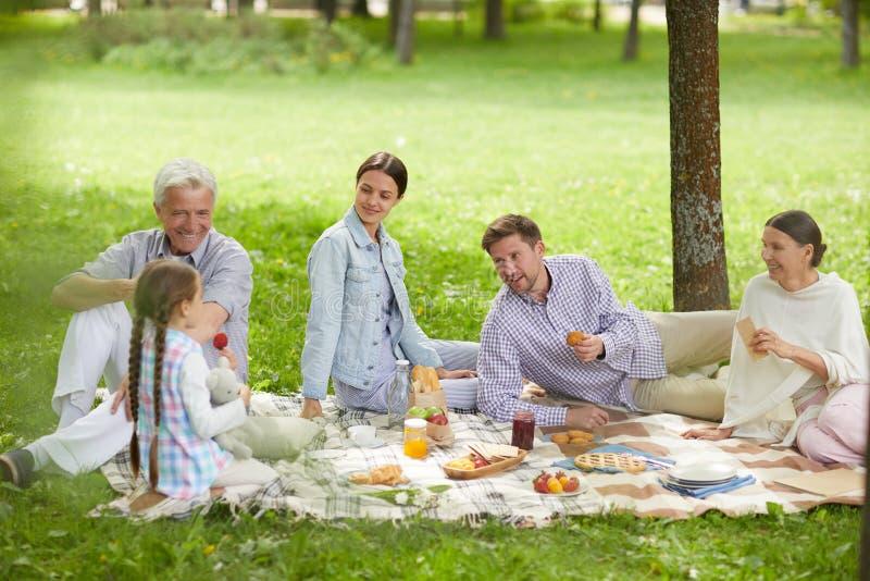 Rodzinny pinkin w parku zdjęcia stock