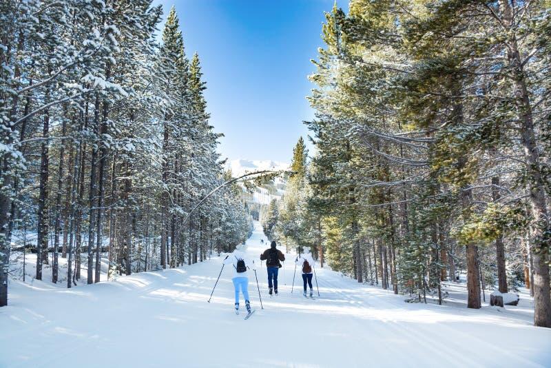 Rodzinny przez ca?y kraj narciarstwo w Breckenridge zdjęcie royalty free