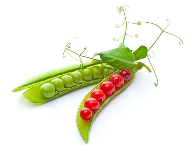 rodzynku zieleni mieszanki grochy czerwoni fotografia stock