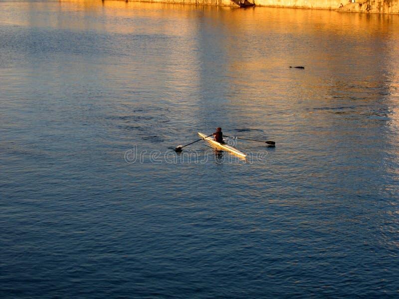 Roeier op de rivier bij zonsondergang stock foto