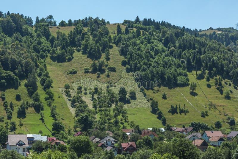 Roemeens de zomerlandschap stock afbeelding