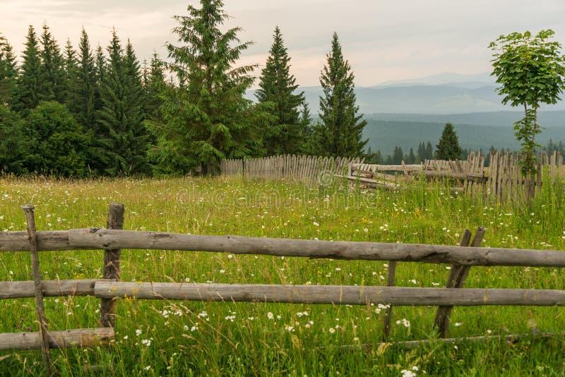 Roemeens helling en dorp in de zomertijd stock fotografie