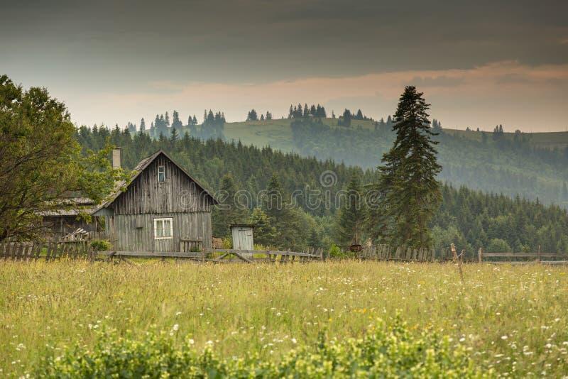 Roemeens helling en dorp in de zomertijd stock afbeelding