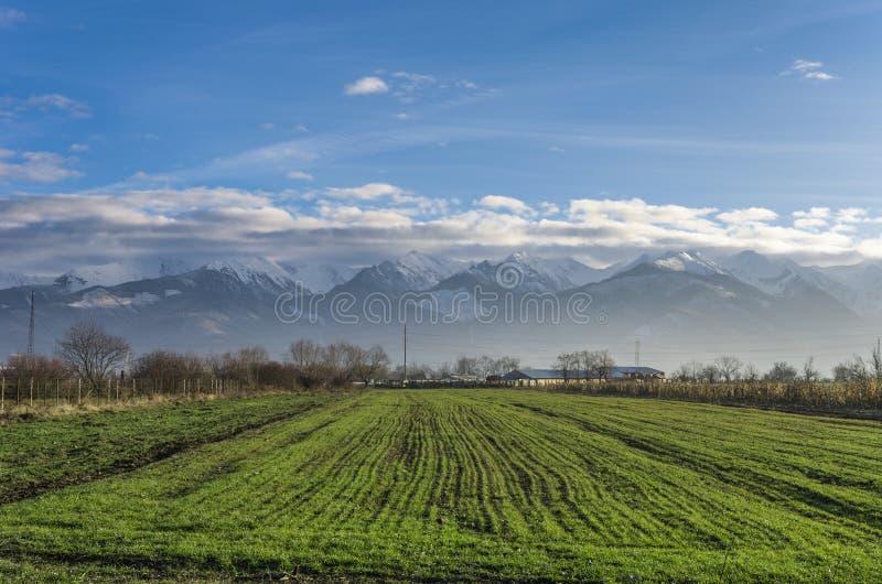 Roemeens Karpatisch bergenlandschap royalty-vrije stock afbeelding