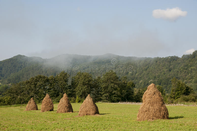 Roemeens landschap stock foto