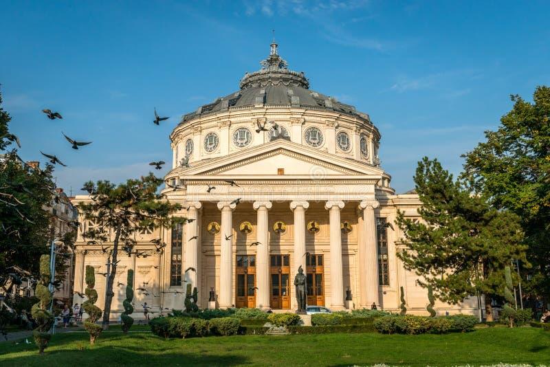 Roemeense Athenaeum stock afbeeldingen