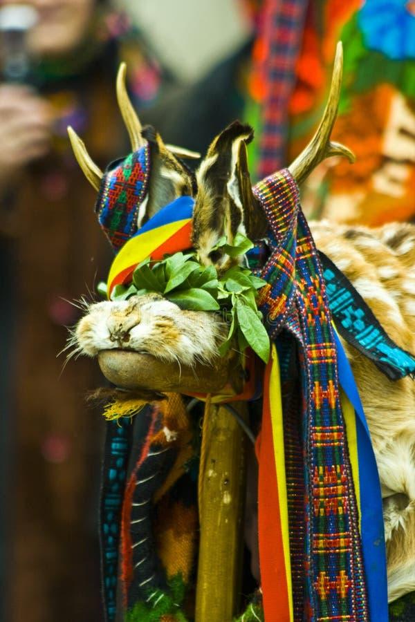 Roemeense folkloristische geit stock foto's
