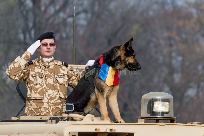Roemeense nationale dagparade met hondseenheid en militaire begroeting stock foto's