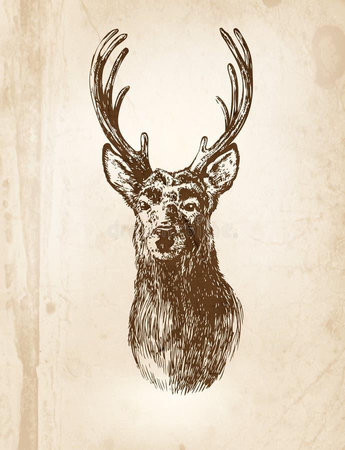 Download Rogacz ilustracja wektor. Obraz złożonej z deere, papier - 33523888