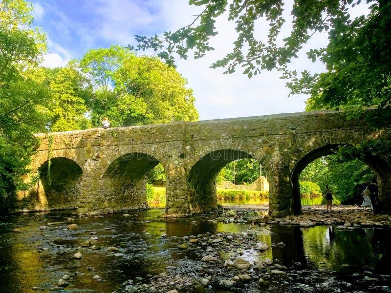 Rogacza parka most zdjęcie stock