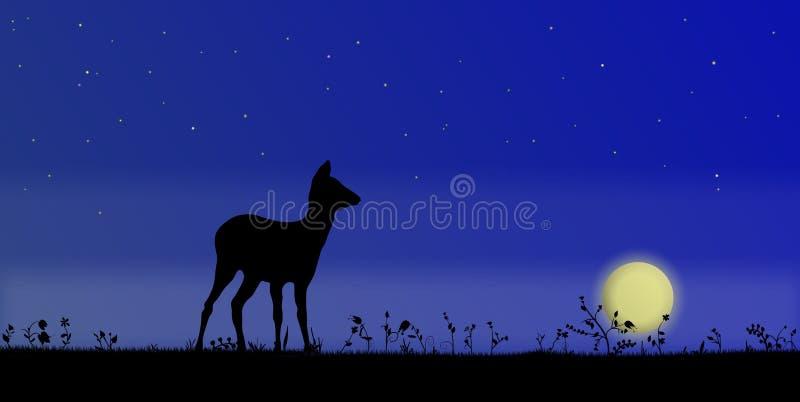 rogacze segregująca noc royalty ilustracja